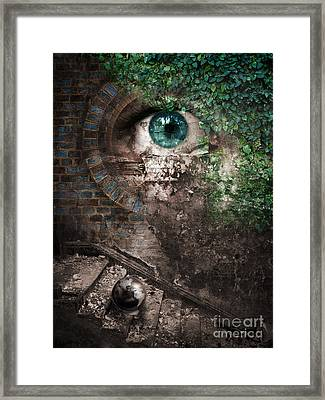 The Conquest Framed Print by VIAINA Visual Artist