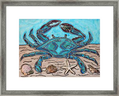 The Content Crab Framed Print by Cynthia Snyder