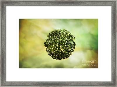 The Creation Framed Print by Binka Kirova