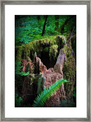 The Creature's Home Framed Print by Amanda Eberly-Kudamik