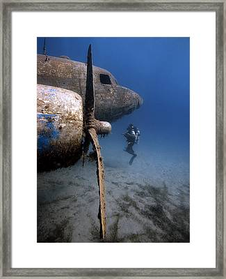 Underwater Diva Framed Print featuring the photograph The Dakota by Rico Besserdich
