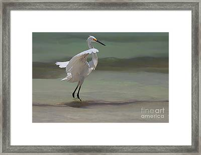 The Dance Framed Print by John Edwards