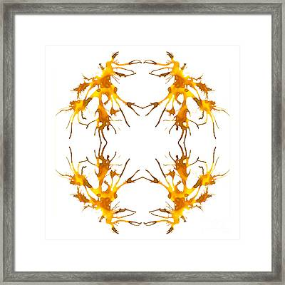 The Dance Framed Print by Lyndsey Warren