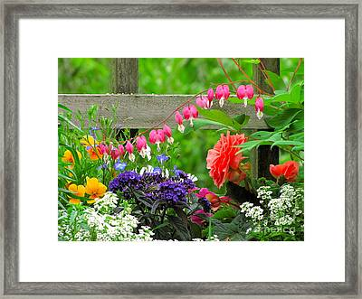 The Dance Of Spring Framed Print by Sean Griffin