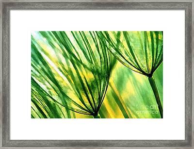 The Dandelion Framed Print by Odon Czintos
