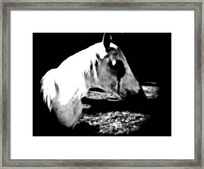 The Dark One Framed Print by Chasity Johnson