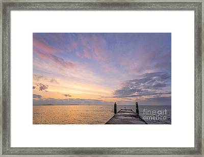 The Dawn Of A New Age Framed Print by Evelina Kremsdorf