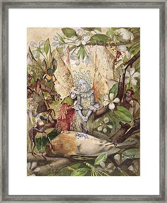 The Death Of Cock Robin Framed Print by John Anster Fitzgerald