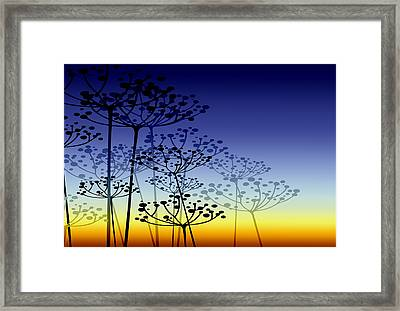 The Dill 3 Version 4 Framed Print by Angelina Vick