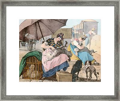 The Dog Groomers Framed Print by John James Chalon