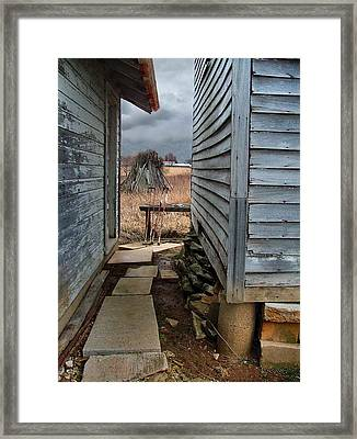 The Dog Trot Framed Print by Julie Dant