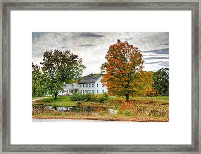 The Dream Framed Print by Donna Doherty