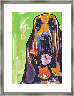 The Droopy Bloodhound Framed Print by Lea S