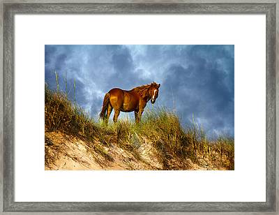 The Dune King Framed Print by Betsy Knapp
