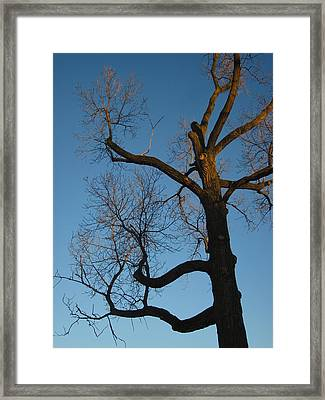 The Dusk Kept Dropping Framed Print by Guy Ricketts
