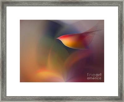 The Early Bird-abstract Art Framed Print by Karin Kuhlmann
