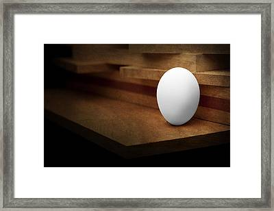 The Egg Framed Print by Tom Mc Nemar