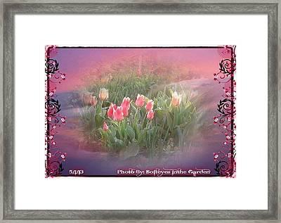 The Elagance Of Spring Framed Print by Annette Abbott