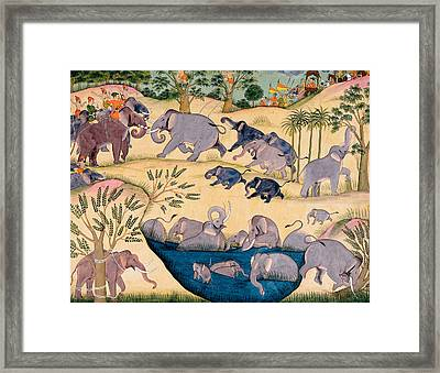 The Elephant Hunt Framed Print by Indian School