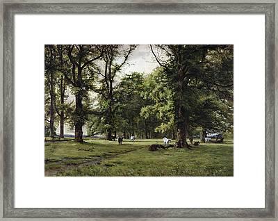 The Elm Walk Framed Print by William Grylls Addison