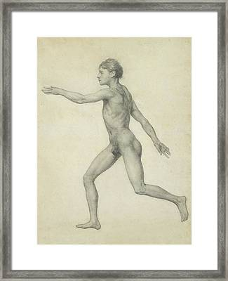 The Entire Human Figure From The Left Lateral View Framed Print by George Stubbs