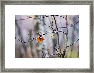 The Essence Of Autumn - Featured 3 Framed Print by Alexander Senin