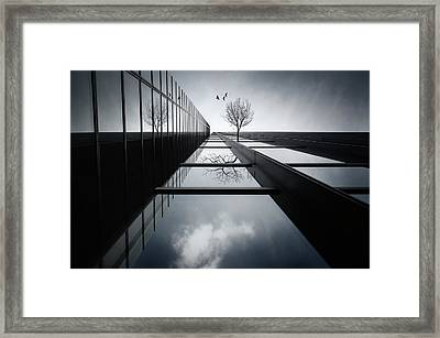 The Ethereal Flying Garden Framed Print by Dr. Akira Takaue