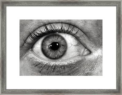 The Eye Framed Print by Luke Moore
