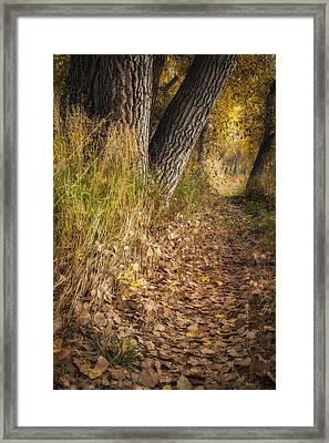 The Fall Way Home Framed Print by Michael Van Beber