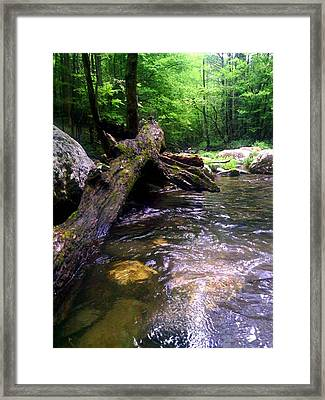 The Fallen Framed Print by Dwayne Gresham