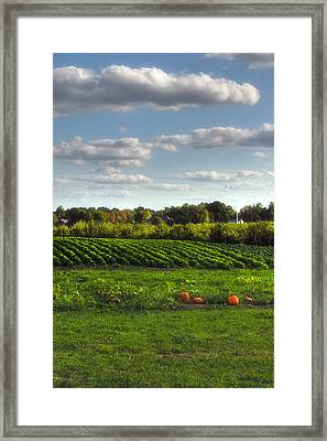 The Farm Framed Print by Joann Vitali