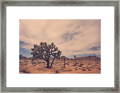 The Feeling Of Freedom Framed Print by Laurie Search