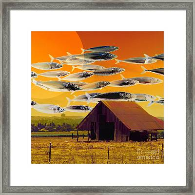 The Fish Farm 5d24404 Square Framed Print by Wingsdomain Art and Photography