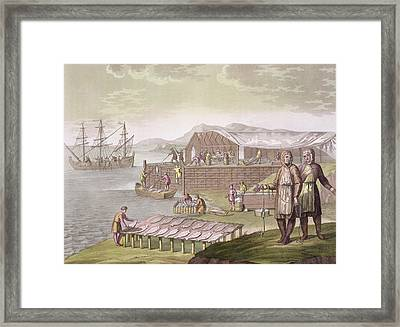 The Fishing Industry In Newfoundland Framed Print by G Bramati