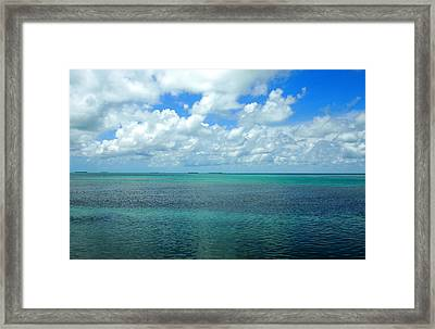 The Florida Keys Framed Print by Amy McDaniel