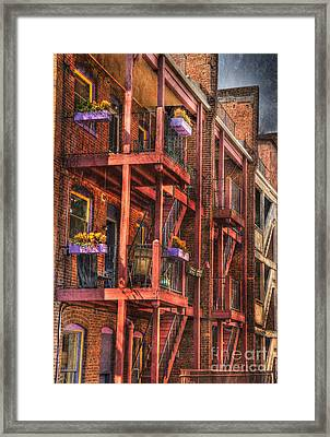 The Flower Pots On The Patio Framed Print by Paul Ward