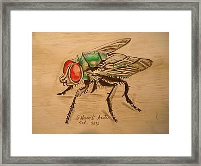 The Fly Framed Print by Fladelita Messerli-