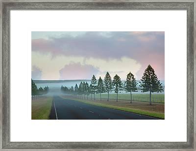 The Foggy Tree-lined Manele Road Framed Print by Jenna Szerlag