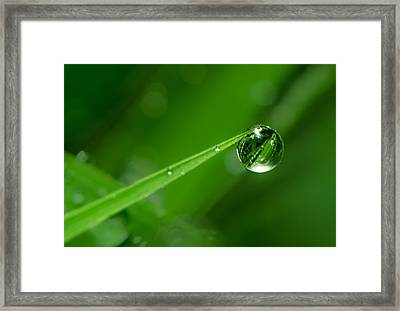 The Force Of Nature Framed Print by Tin Lung Chao