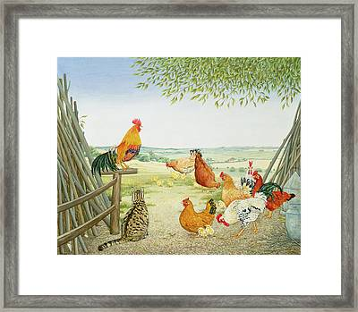 The Fowl And The Pussycat Framed Print by Ditz