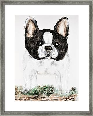 The Frenchton Framed Print by Maria Urso