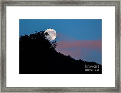 The Full Moon Rises  Framed Print by Mimi Ditchie