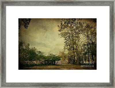 The Gate Framed Print by Joan McCool