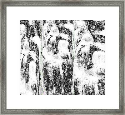 The Gathering Framed Print by Ruth Clotworthy