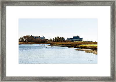 The Geese In Saquatucket Harbor Framed Print by Michelle Wiarda