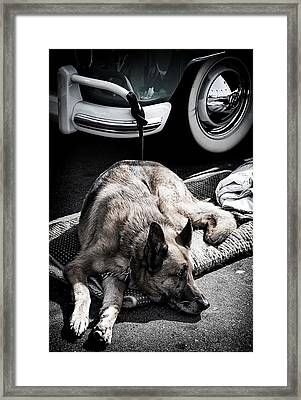 The German Guard Framed Print by Ron Regalado