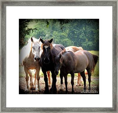 The Girls Framed Print by Rabiah Seminole