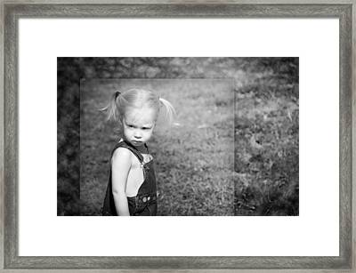 The Glare Framed Print by Steven  Michael