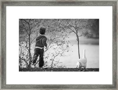 The Goose Chase Framed Print by Priya Ghose