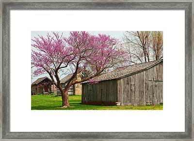 The Gray Campbell Farmstead Framed Print by Lena Wilhite